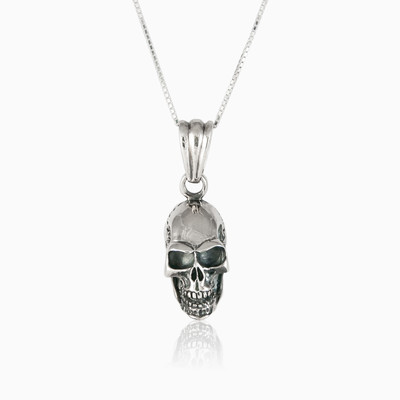 Skull head pendant man pendants NT