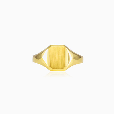 Small gold ring man rings High polished